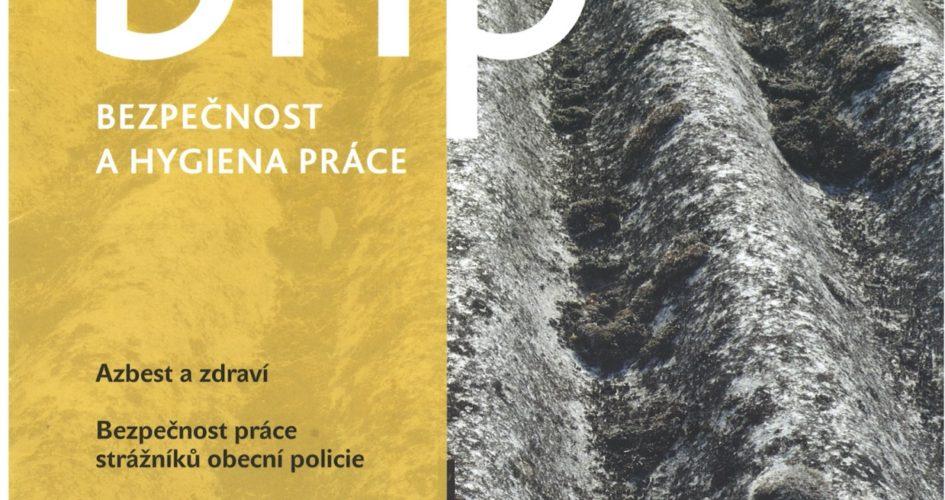 Náš článek v BHP 11/2019 ke kontrolám VP PO a PBZ